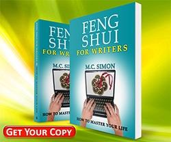 Feng Shui For Writers - WARNING!